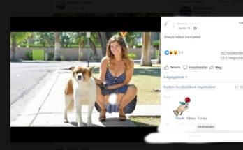 A Facebookon szabad a puncit mutogatni